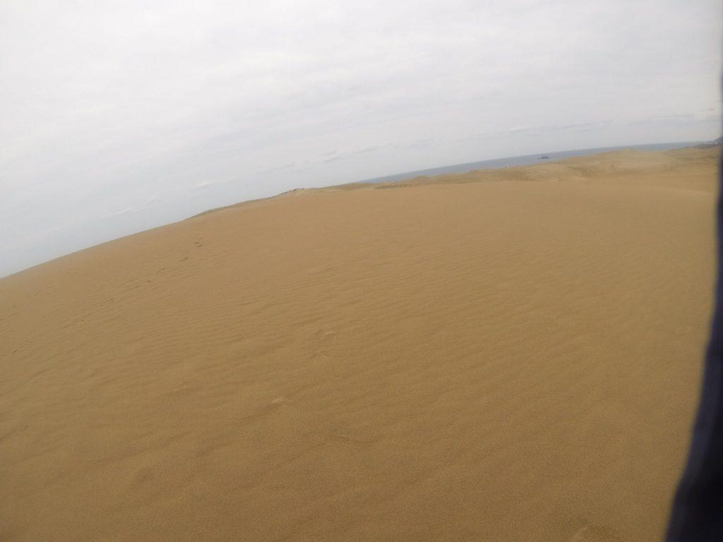 雨上がりの鳥取砂丘