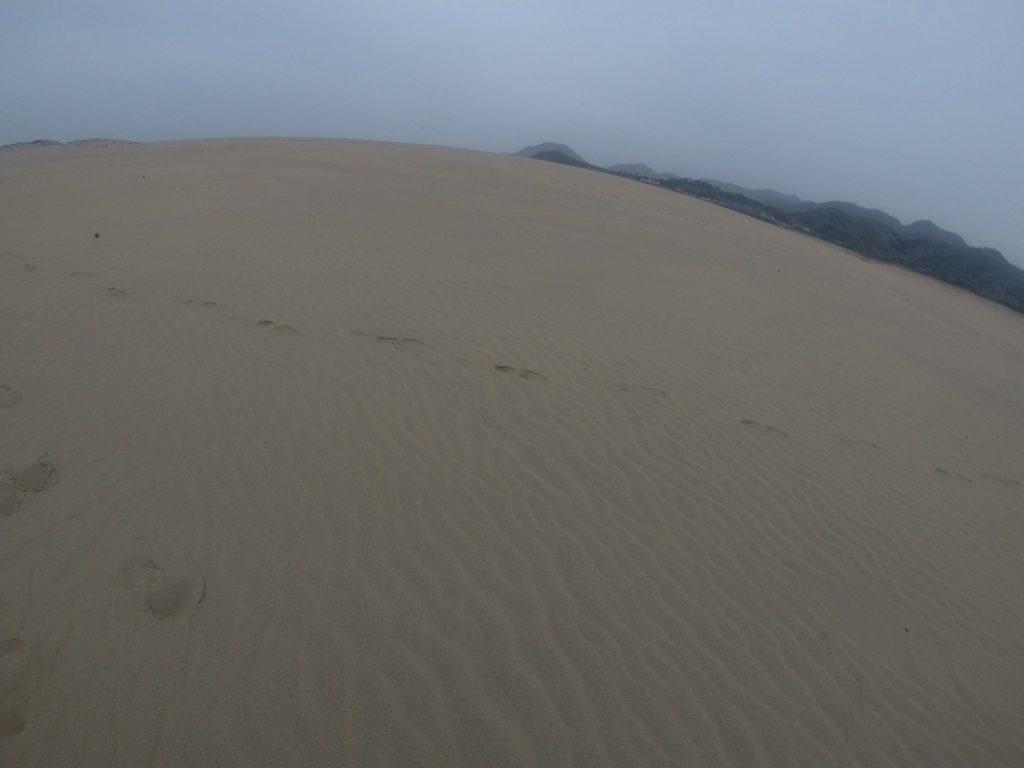 涼しい~曇りの鳥取砂丘