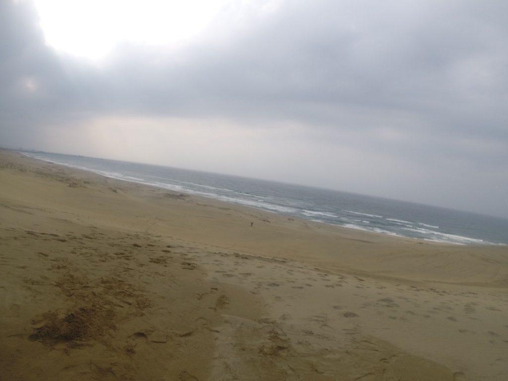 雨上がりの砂丘
