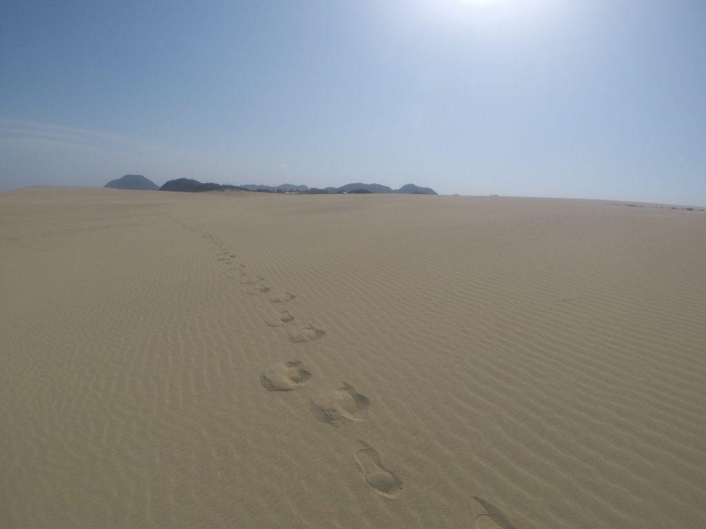鳥取砂丘と足跡