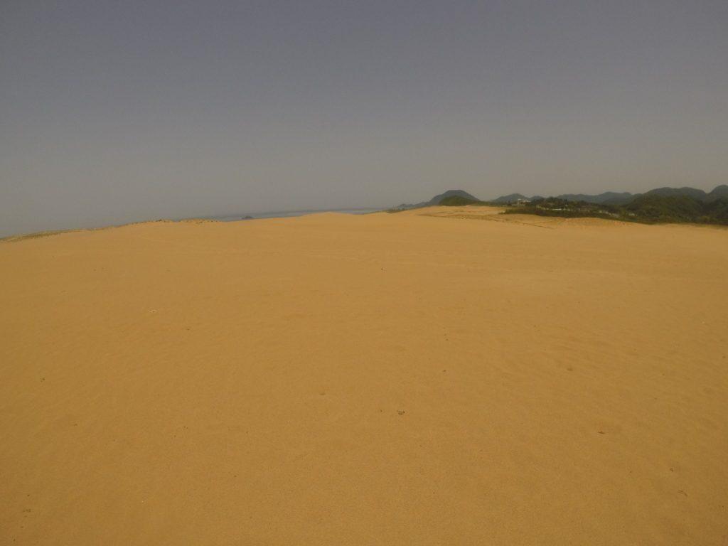 少し霞んでますが真っ青な空の鳥取砂丘