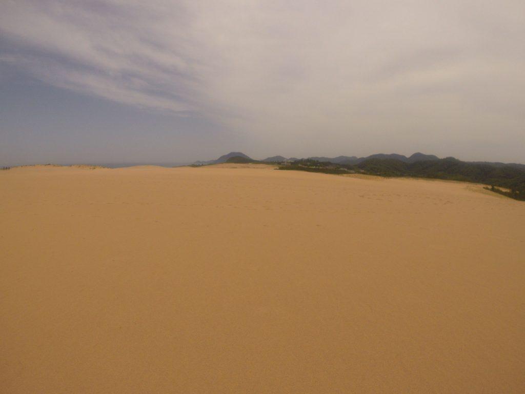朝はまだ曇っていた鳥取砂丘