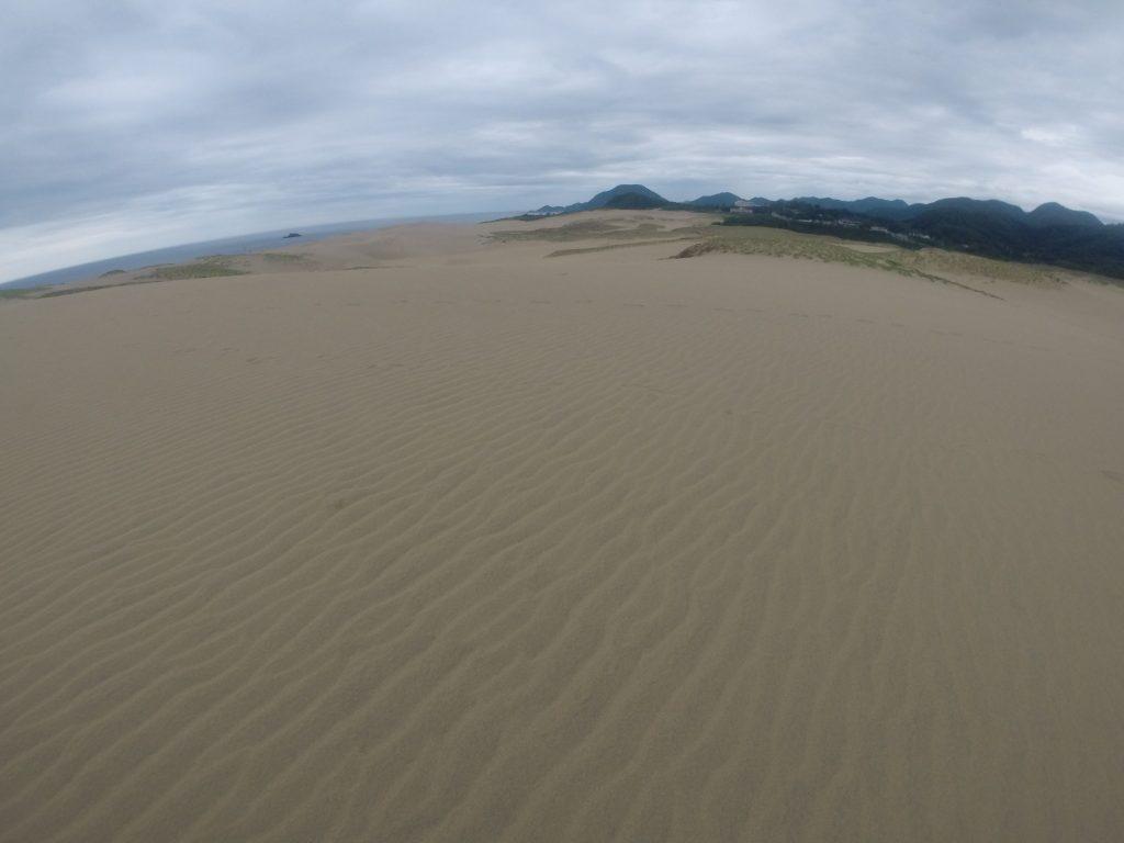 今にも泣きだしそうな空の鳥取砂丘