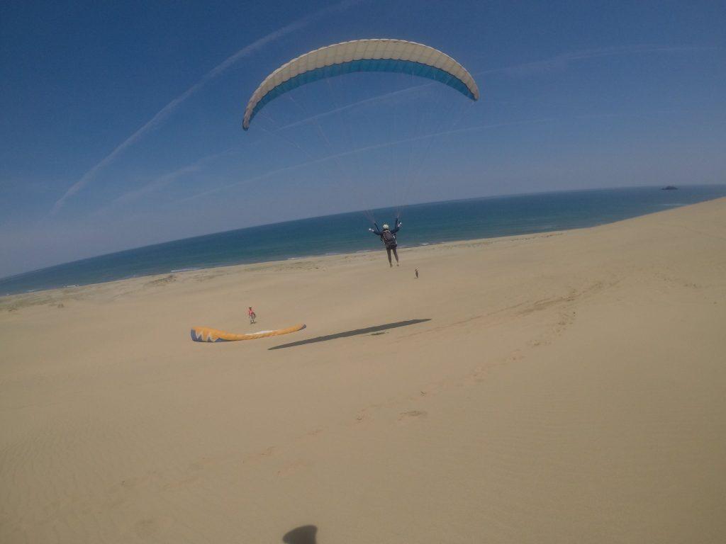 風向きが変わってからは、海を眺めなら優雅な飛び