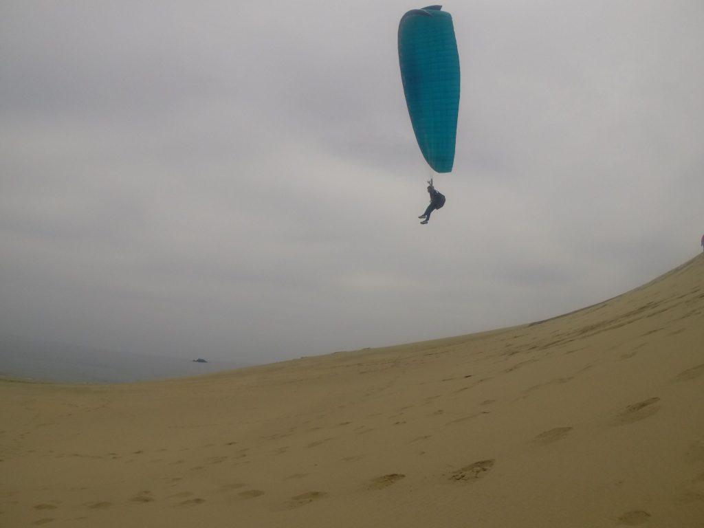 するするっと砂の上を滑空するのは気持ちいい~