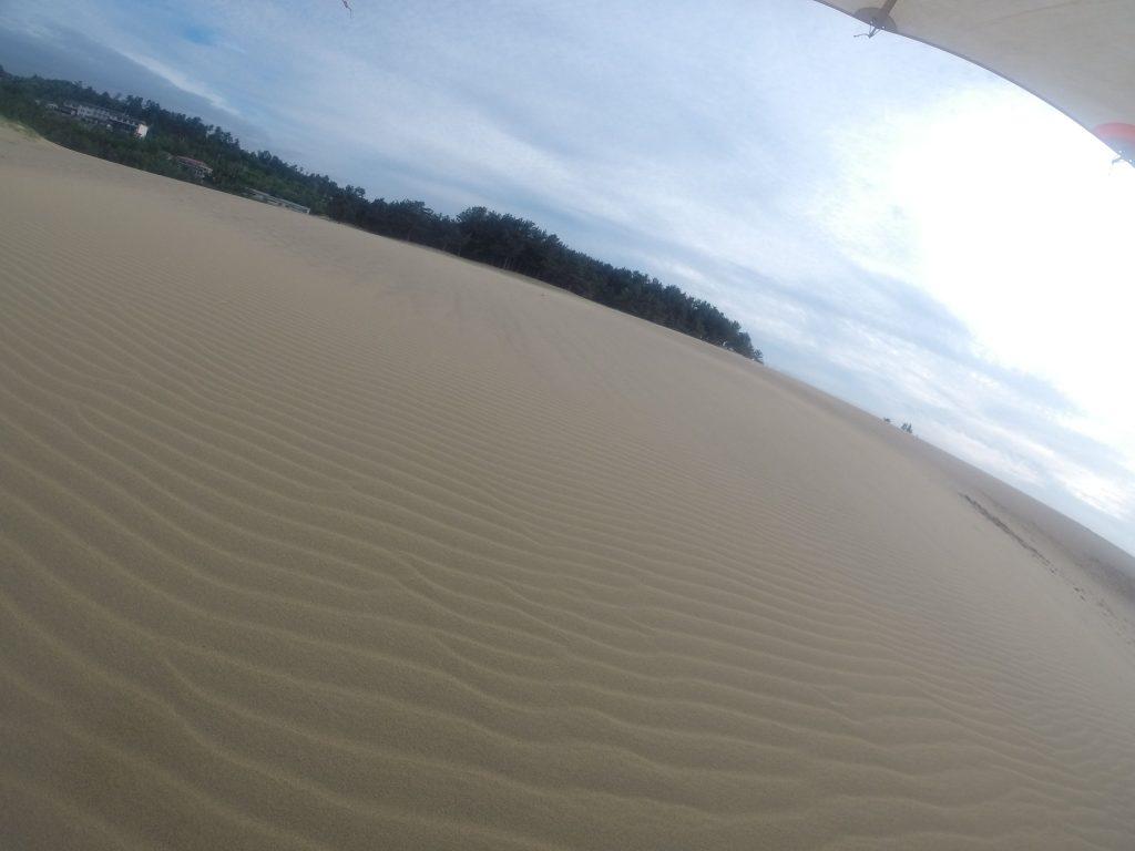 鮮やかな風紋広がる鳥取砂丘