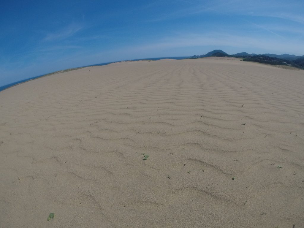 明るい空が広がった日曜の鳥取砂丘