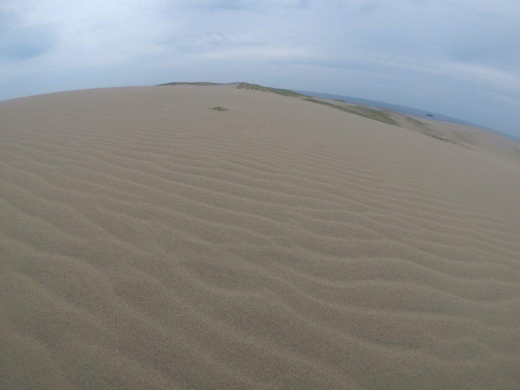 すっかり曇ってしまった鳥取砂丘