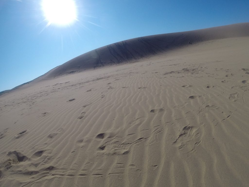 美しく晴れ渡った鳥取砂丘