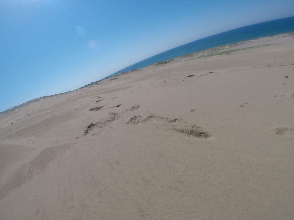 真っ青な空と海の鳥取砂丘