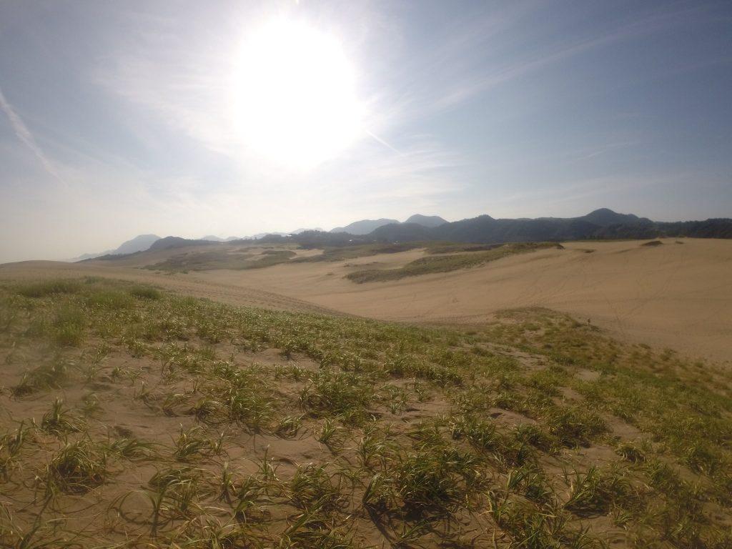 朝からかぁ~っと太陽が照りつける鳥取砂丘