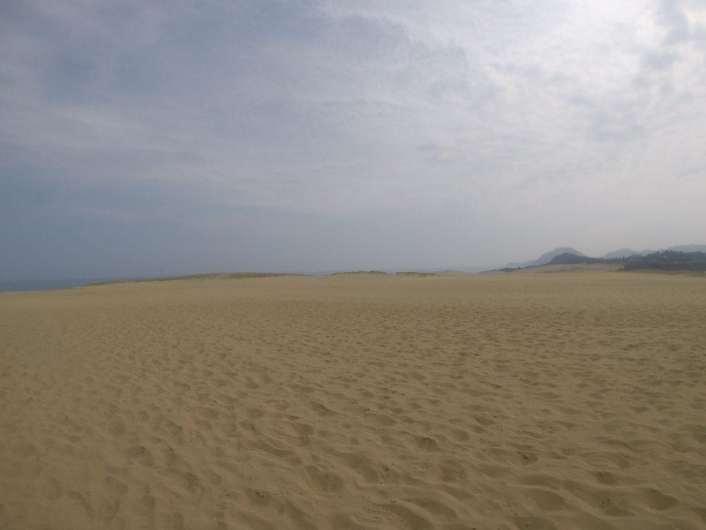 霞みが増えて、もやっとした風景の鳥取砂丘