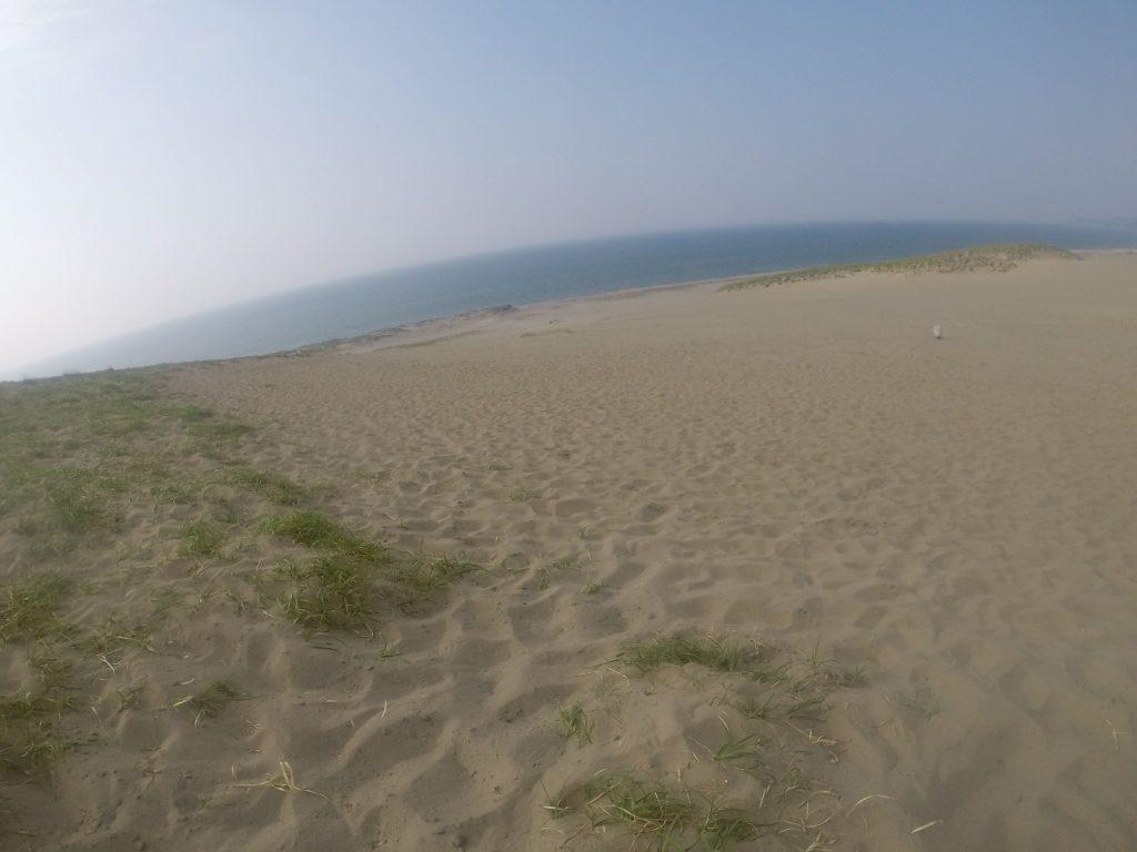 暑さでとろけてしまいそうな鳥取砂丘