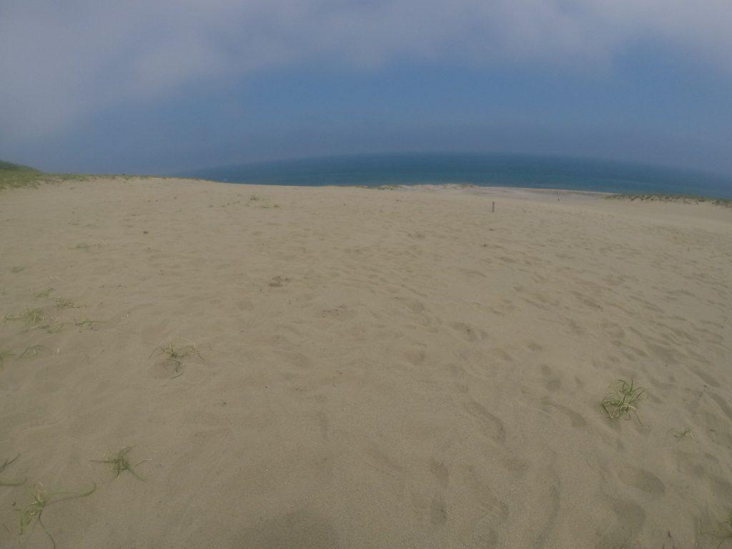 朝から海風で、なんとか涼める鳥取砂丘