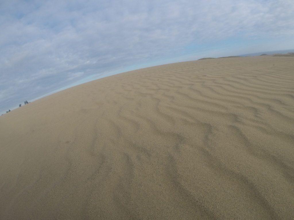 うっすら曇り空で、より涼しさを感じた鳥取砂丘