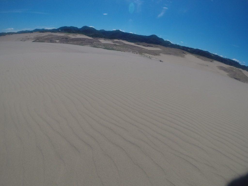 しばらくの間、風紋が楽しめそうな鳥取砂丘