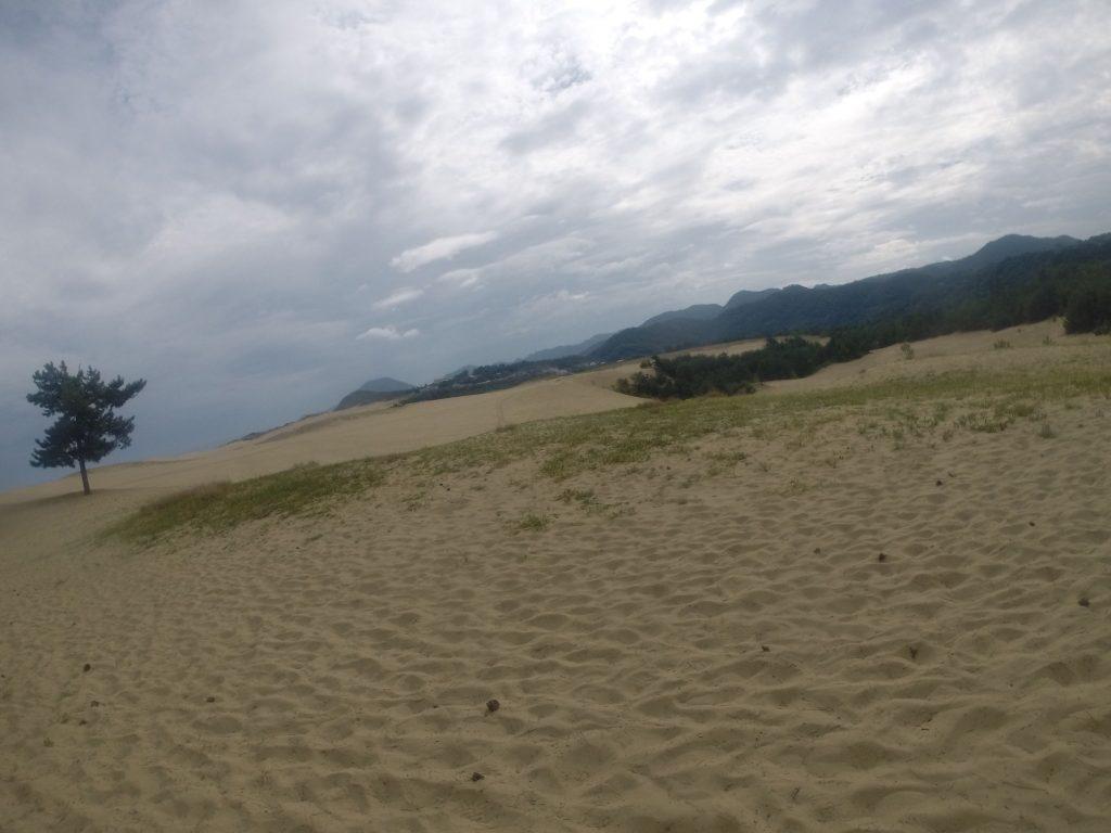 朝はまだ、ゆるい日差しを感じた鳥取砂丘