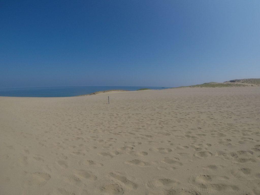水平線が一直線にのびる鳥取砂丘の風景