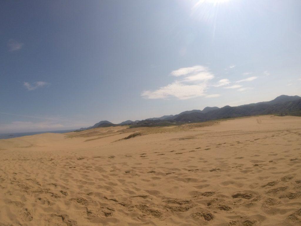 光線が透き通っていて、見るものすべてがまぶしい鳥取砂丘