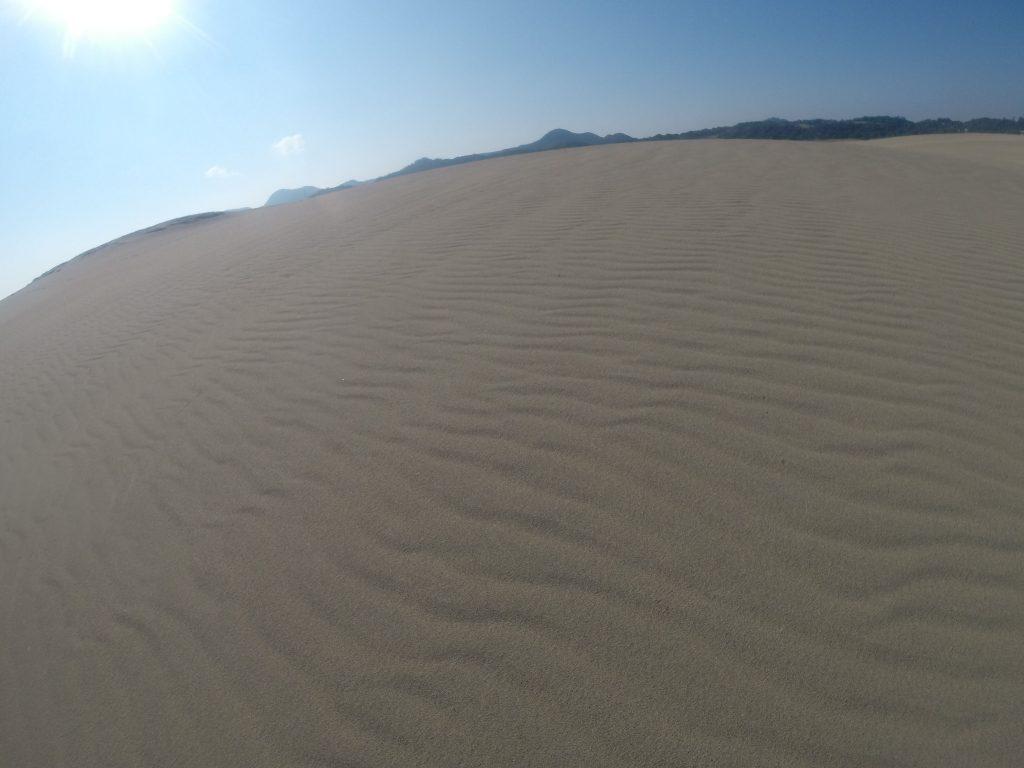 久しぶりにくっきり風紋が見られた鳥取砂丘