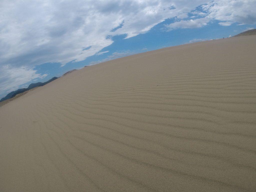 新たに美しい風紋が現れていた鳥取砂丘