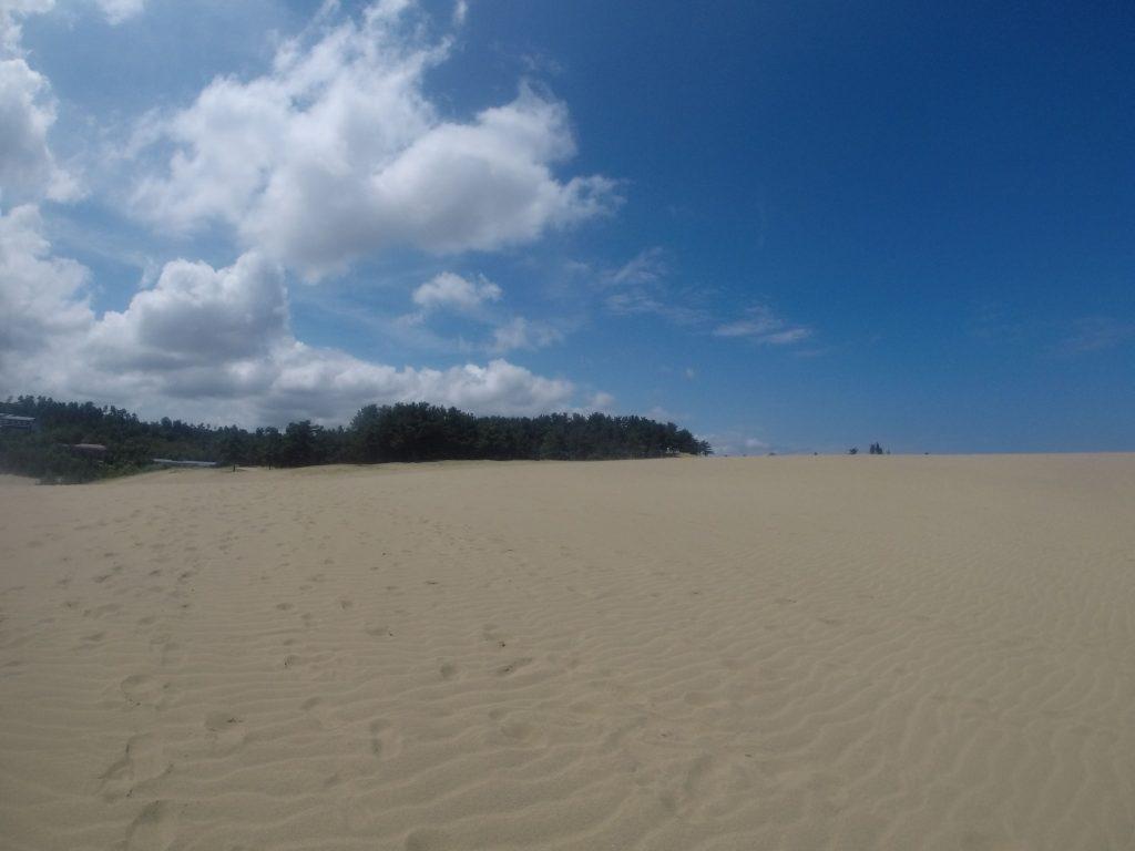 さーっと青空が広がってきた鳥取砂丘です。