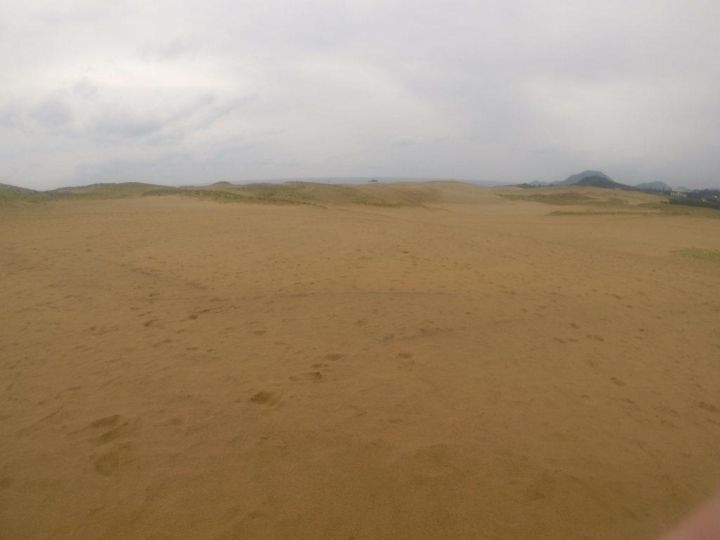 朝まで雨が降って、しっとり濡れている鳥取砂丘