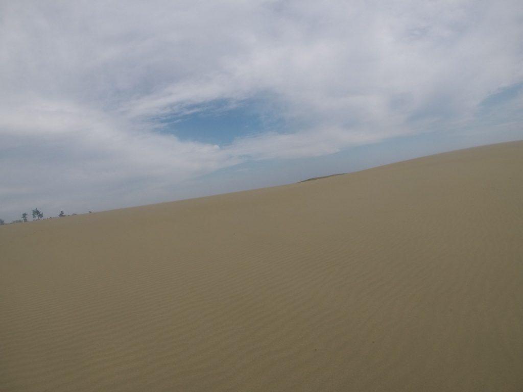 なんとなくグレーな空ながら、風紋鮮やかな鳥取砂丘