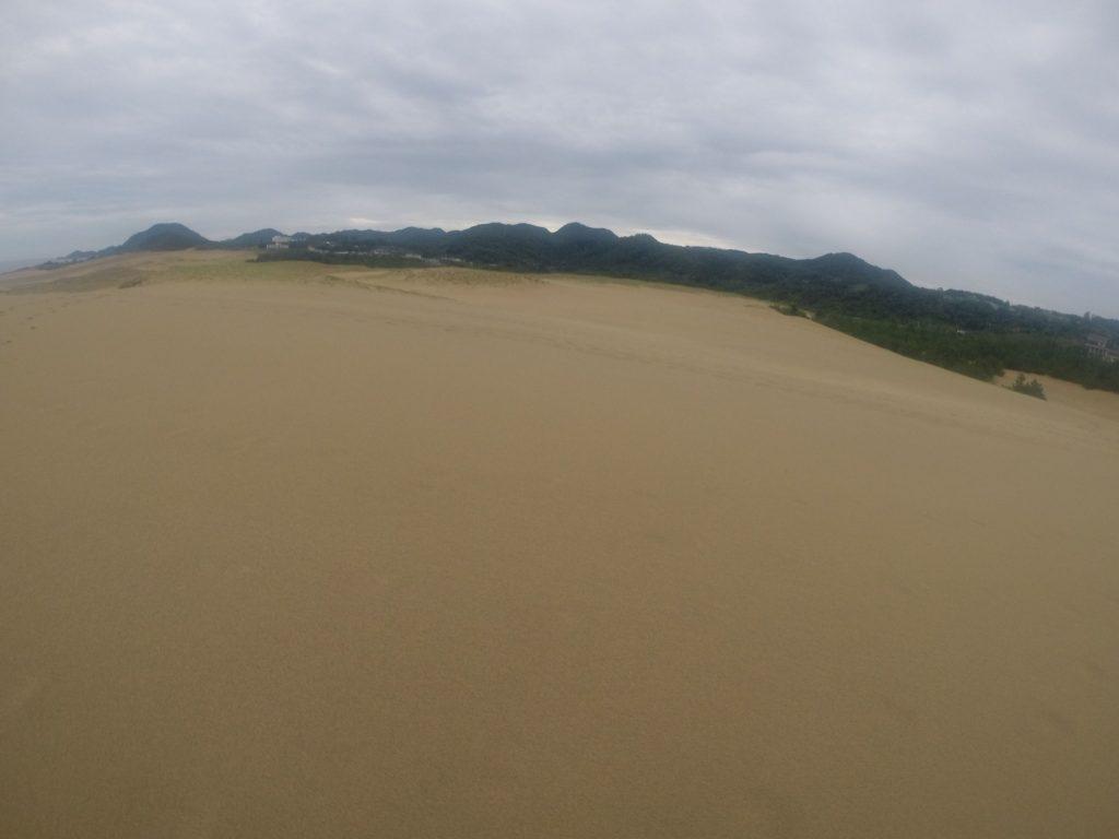 お昼を過ぎてから、急に小降りになった鳥取砂丘