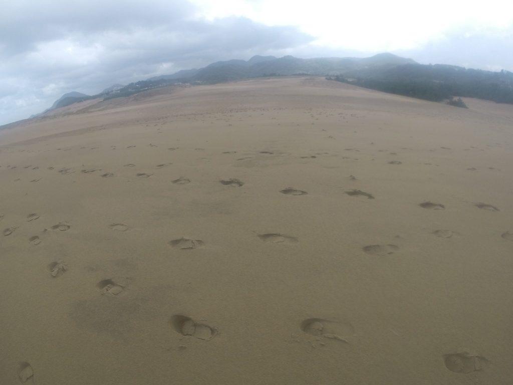 たくさん雨が降って、しっとり濡れた鳥取砂丘