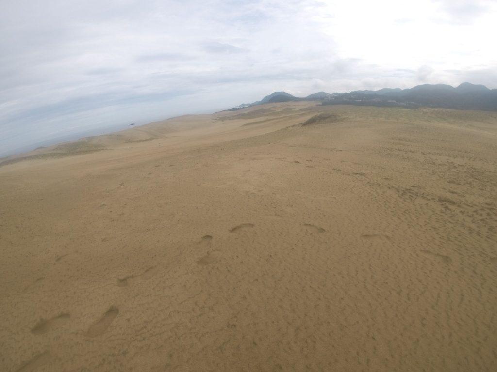 雨上がりですぐに砂が乾いてきた鳥取砂丘