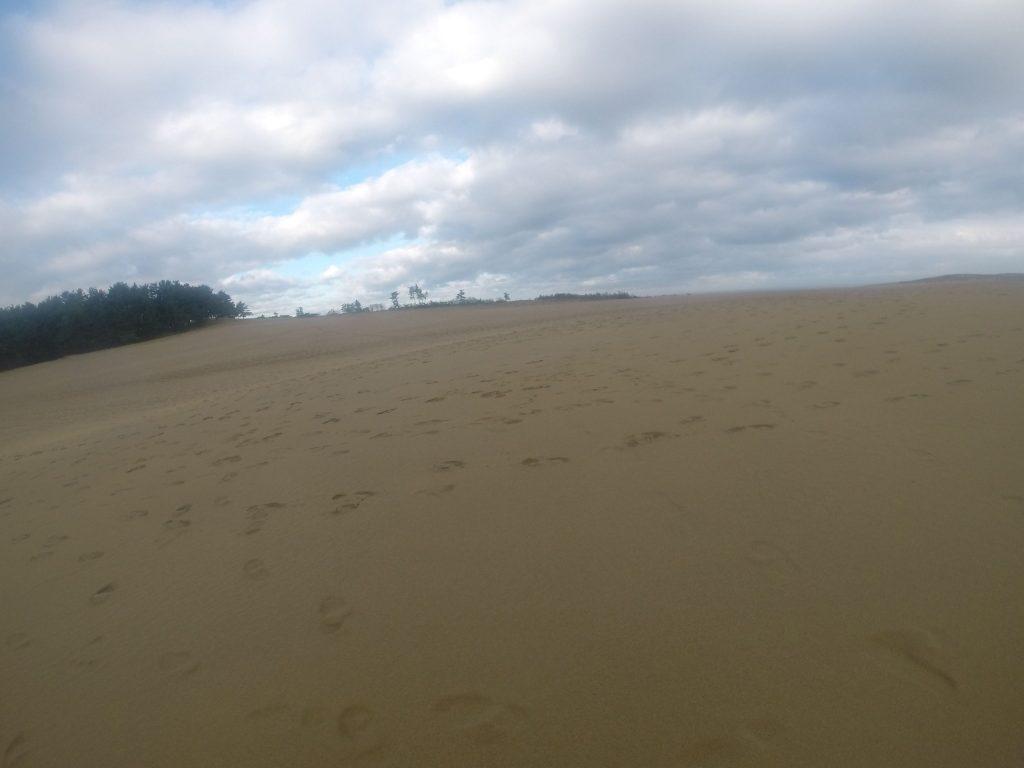 連休中日ということで、すでに足跡でいっぱいの鳥取砂丘