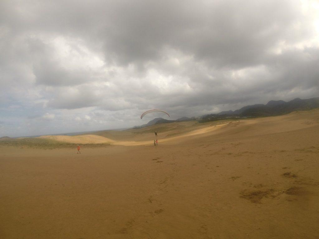 広大な砂丘の一部になりながら、優雅なフライトを楽しみました