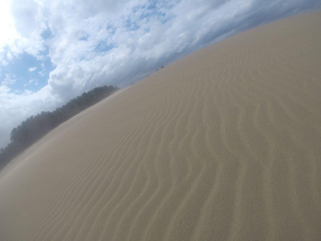 たくさんの足跡が、すっかり風紋に変わっていた鳥取砂丘