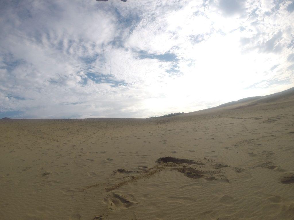 朝から昼にかけてたっぷり青空が広がった鳥取砂丘
