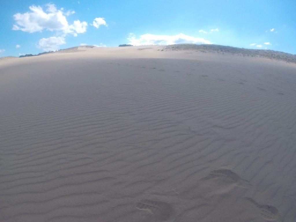 強い南風が吹いて、風紋鮮やかな鳥取砂丘