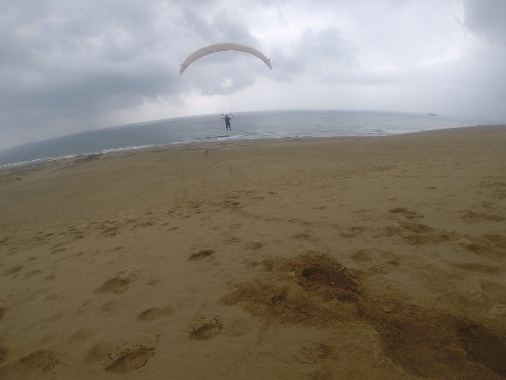 雨のシャワーを浴びながらも、意外と軽快に飛べました