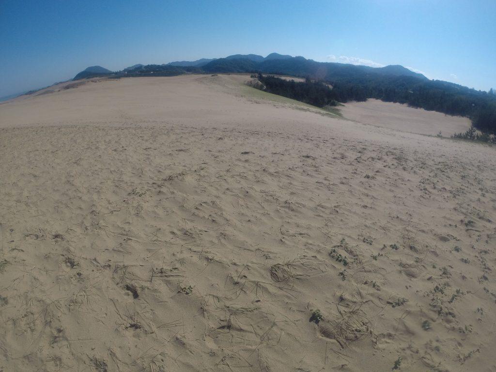 空の青さがたまらなく気持ちいい鳥取砂丘