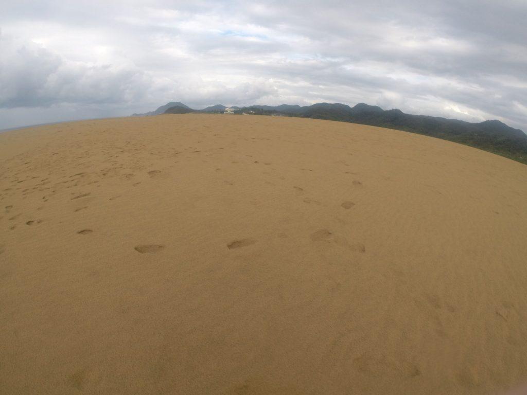 何度も雨が通り過ぎて、すっかり湿った鳥取砂丘