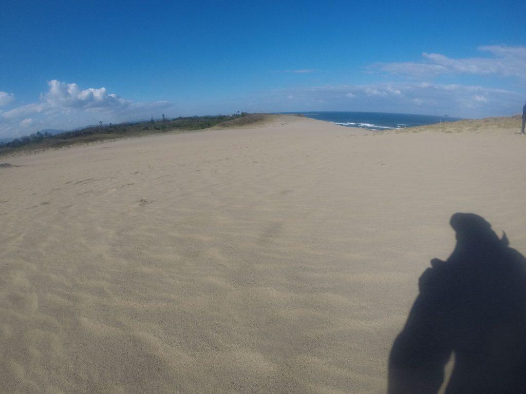 昨日と同じく、乱れ気味の西風が吹いた鳥取砂丘