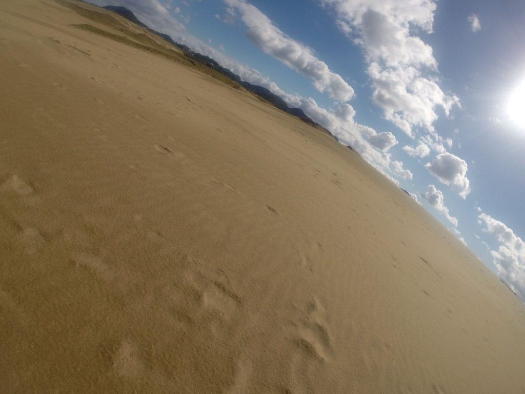 一夜明けて、予想よりも晴れ渡った鳥取砂丘