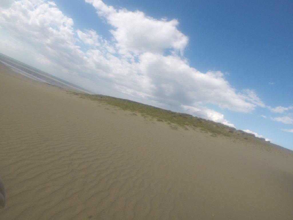 たくさん砂が飛んだ様子がうかがえる鳥取砂丘