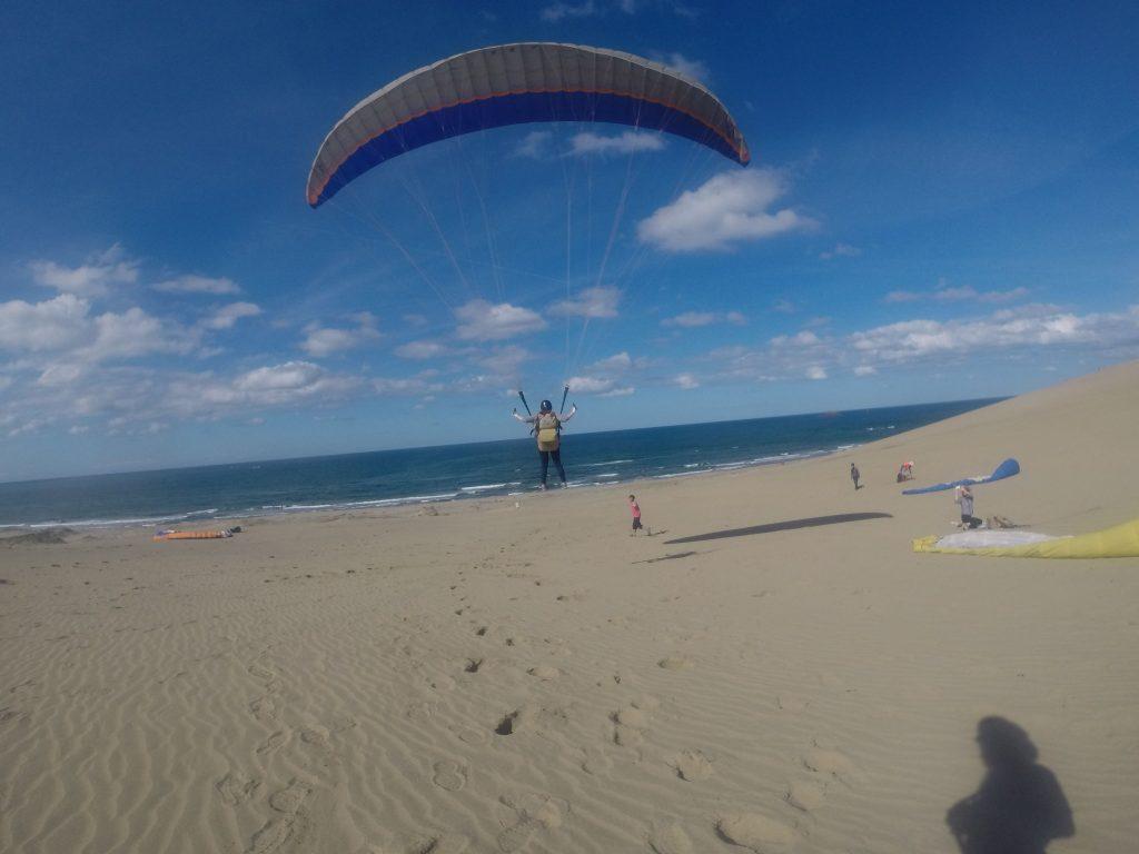 大きな翼が風を受け、滑るように空中を進んでいきます