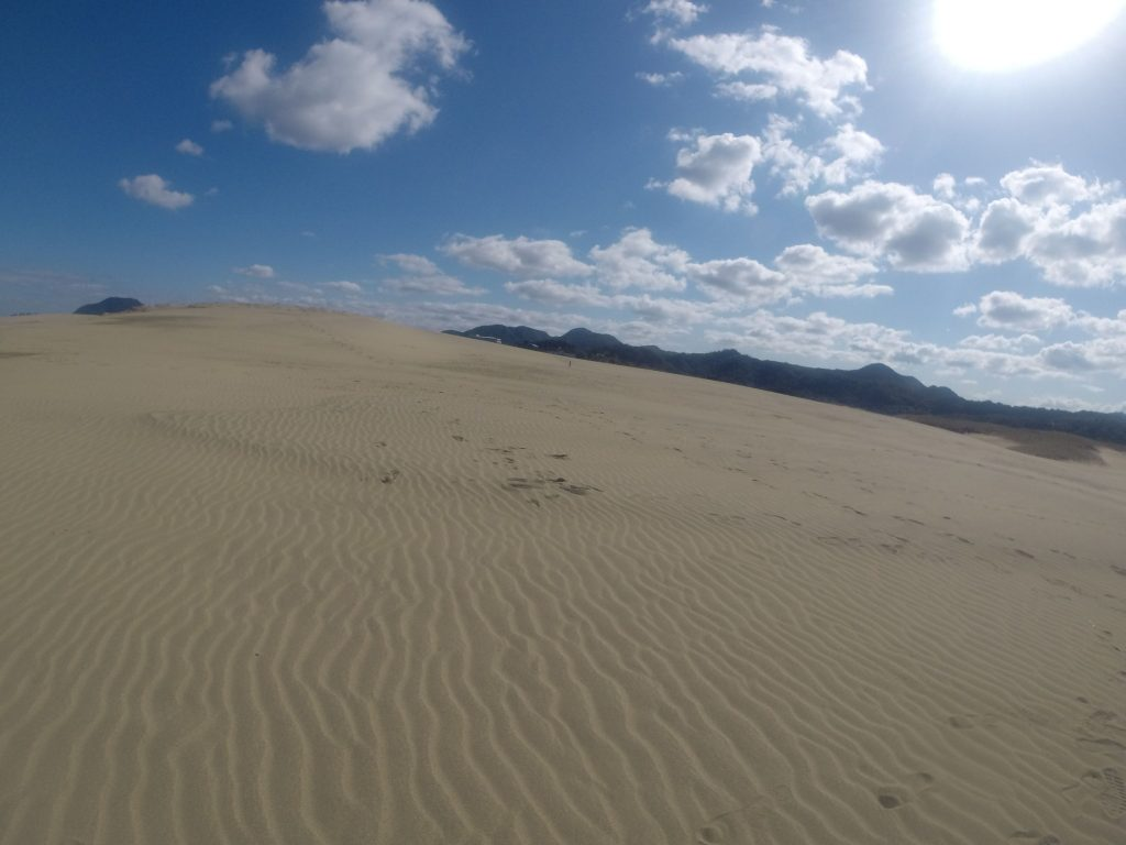 風が吹いて、久しぶりにキレイな風紋が見られた鳥取砂丘