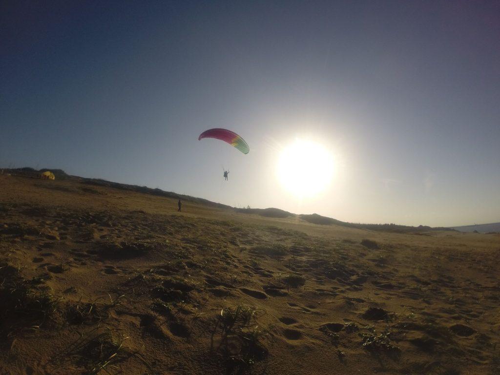 夕陽に映し出された砂丘の上を、するする滑るように飛行