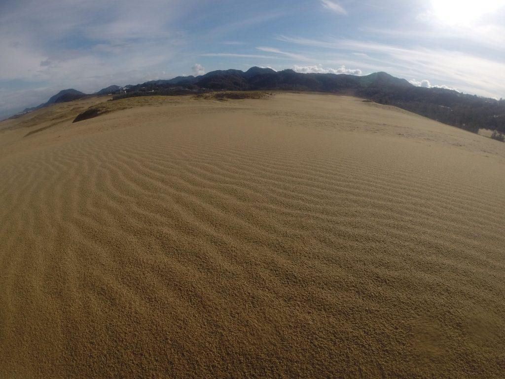 一夜明けると、爽やかな青空が広がった三連休中日の鳥取砂丘