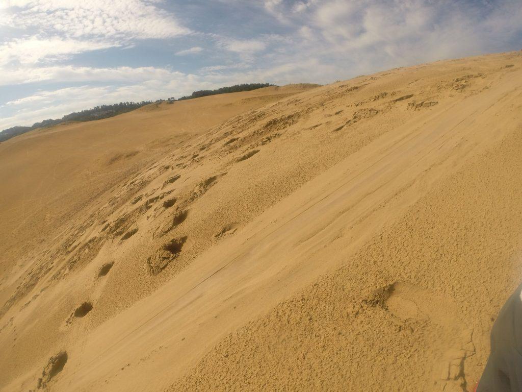 日向での活動も全然苦にならない秋の鳥取砂丘