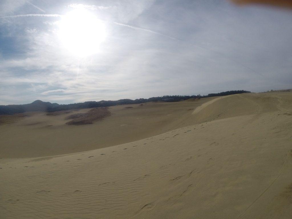 暖かい太陽光線がたっぷりの鳥取砂丘