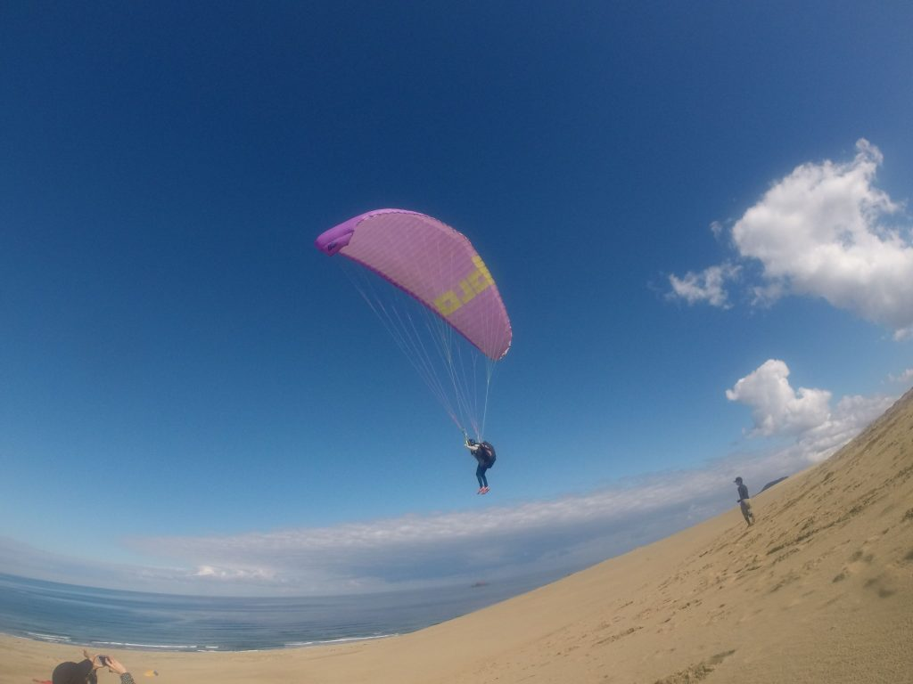 風が変化してからは、海方向へもアクティブに大空堪能