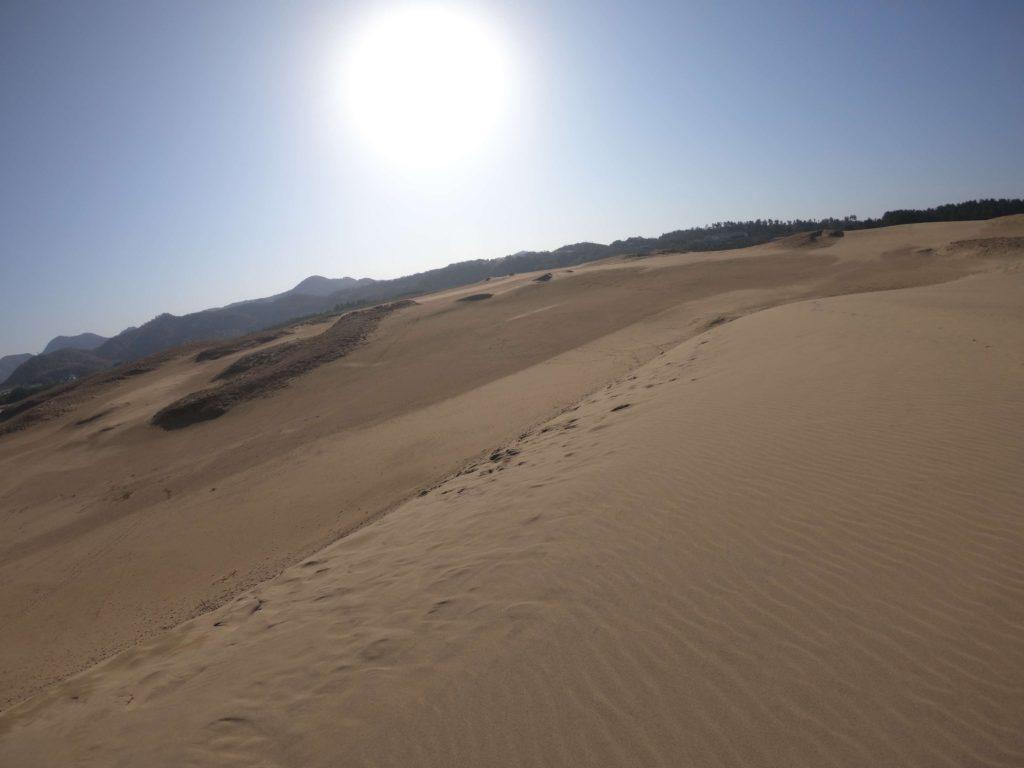 青空いっぱい、朗らかな天気に恵まれた日曜の鳥取砂丘